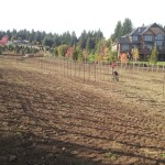 oregon_wine_country